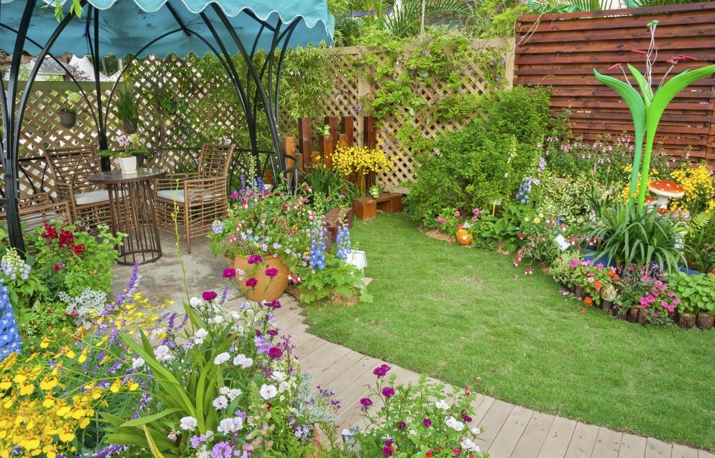 Backyard Patio and Garden