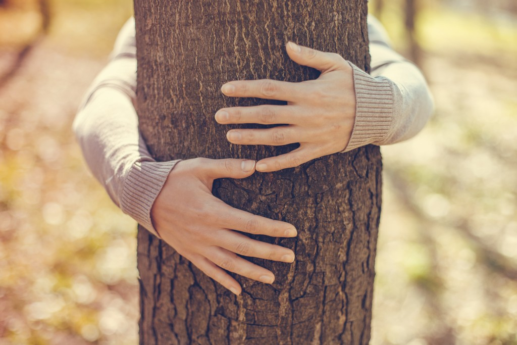 Hugging a tree
