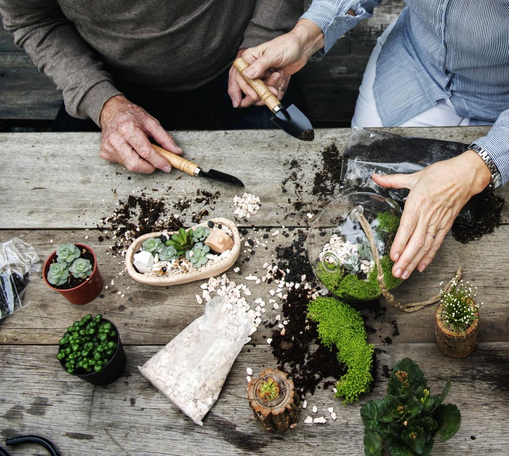 people tending to plants